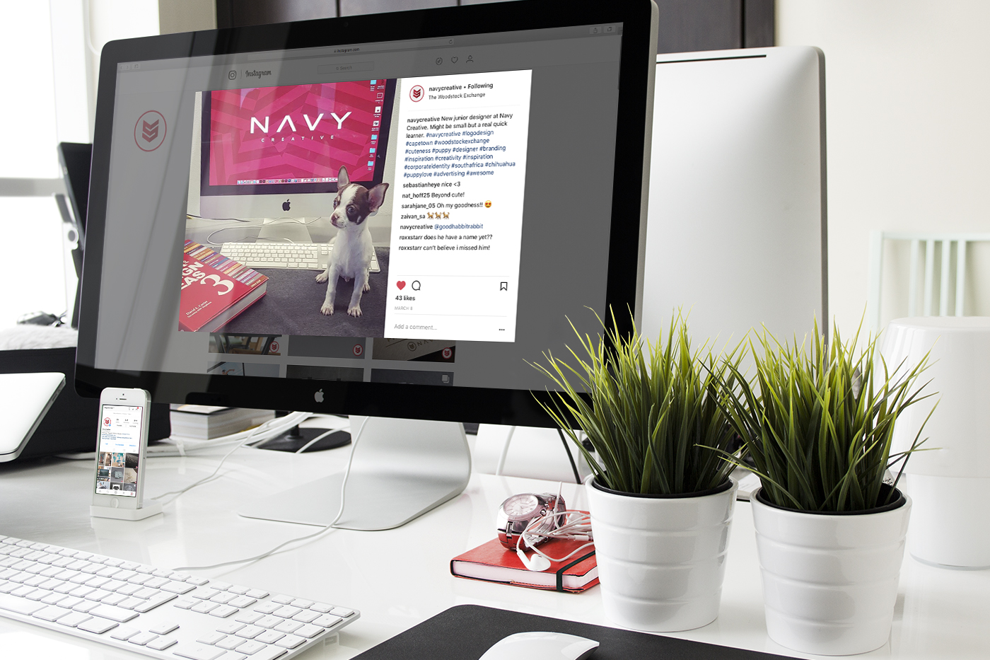 Navy Creative Agency Cape Town